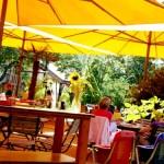 Profitez de votre jardin en famille ou entre amis grâce à la toile d'ombrage !